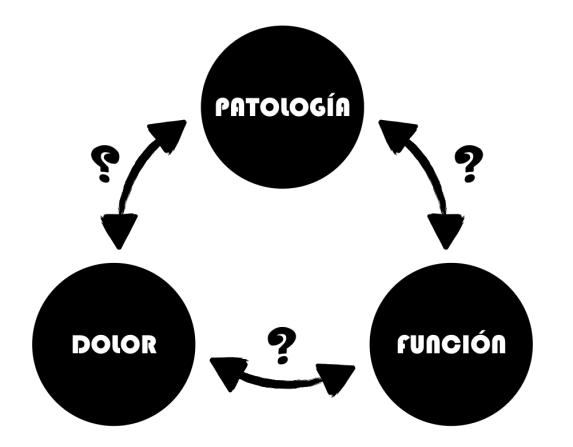 Relación entre dolor, patología y función