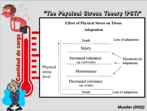 Teoría del estrés físico